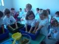 Festa dell'uva 2013-2014 - Scuola dell'Infanzia plesso Einaudi