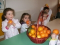 Festa dell'arancia 2013-2014 - Scuola dell'Infanzia plesso Rossini
