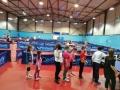 pon-family-school-giochi-d-inverno-il-luogo-del-ping_pong-6