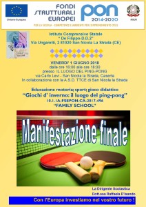 manifestazione ping pong